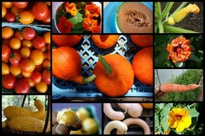 orange color food