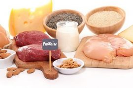 Protein Rich Diet Foods Groups